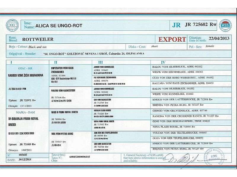 Alica Export