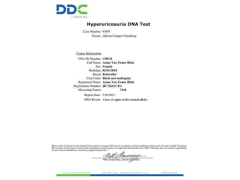 Atena- Hyperuricosuria DNA Results