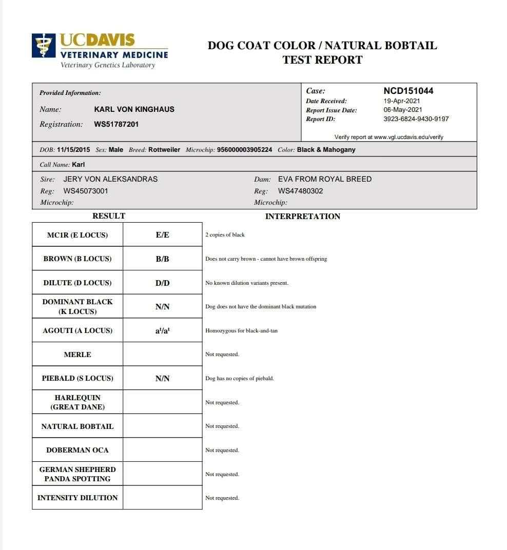 Ostenberg Rottweilers_Karl Von Kinghaus_UC Davis Rottweiler Panel(4)
