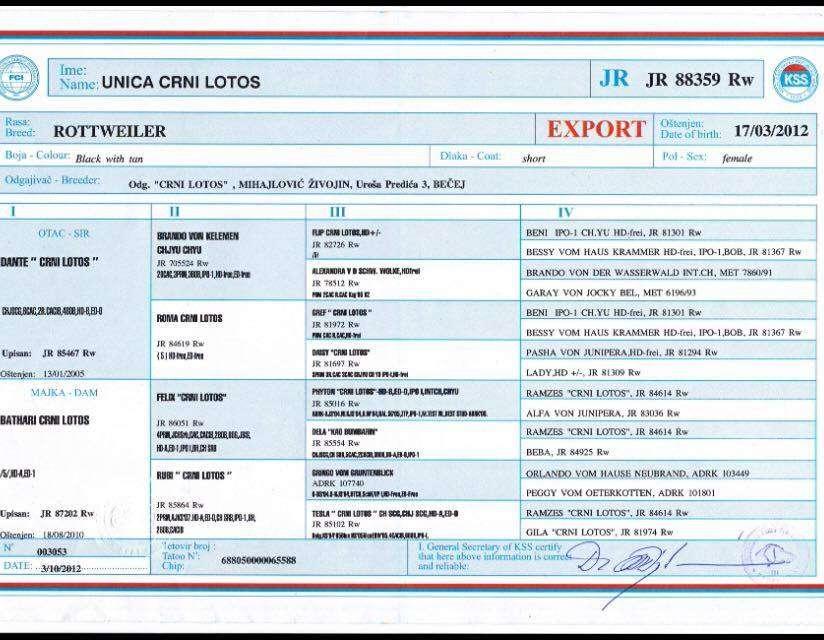Unica Crni Lotos_Export Pedigree